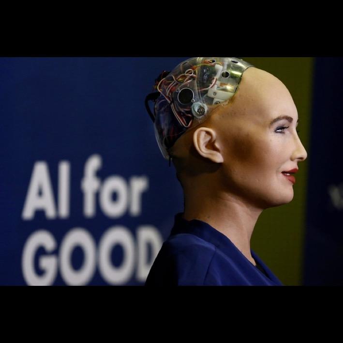 Sophie Robot